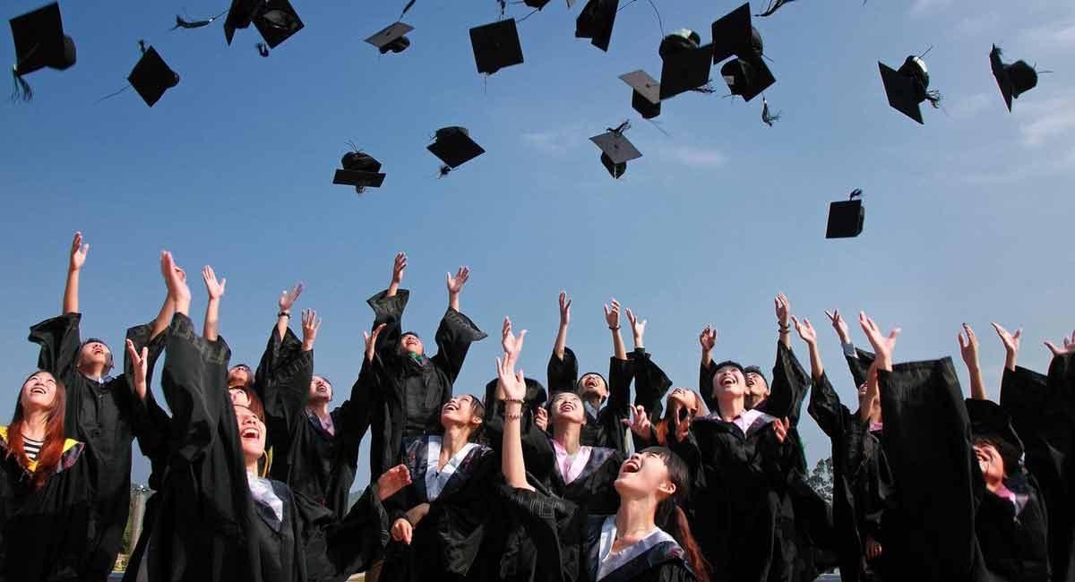 istruzione e formazione curriculum