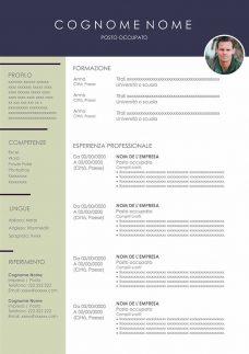 modello curriculum vitae download